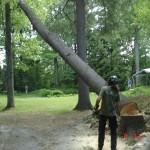 printemps 08, camp, st-joseph, drummond,m.Blair 192