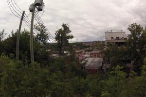 Abattage d'un peuplier au centre-ville de Sherbrooke