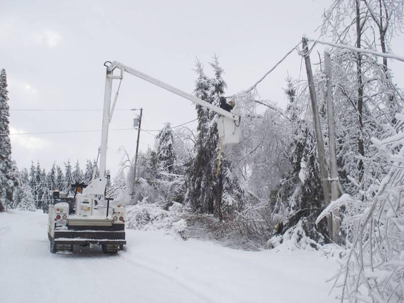 Élagage par un élagueur professionnel autorisé par Hydro-Québec pendant l'hiver